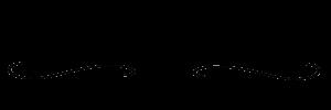 Bossert-Erhard-Logo