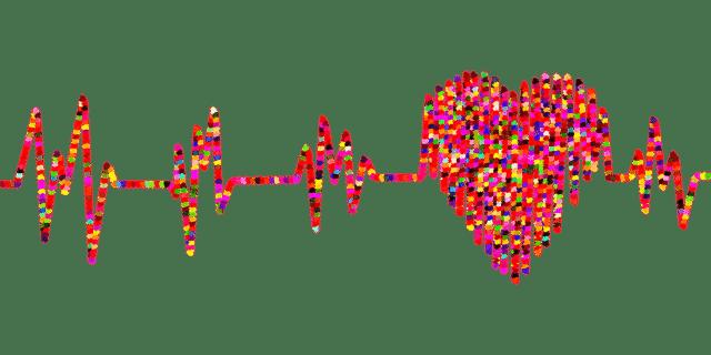 Kenayeurope-Herzverstaerkung-Bild2